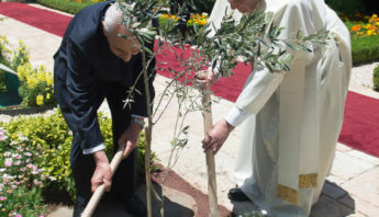 May, 2014: Pope Francis and President Shimon Peres of Israel plant an olive tree together in Jerusalem.